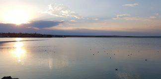 lac_tasaul